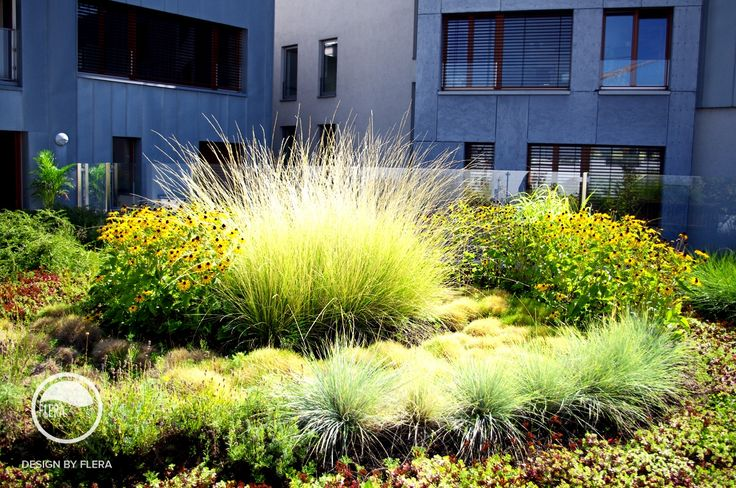 #landcape #architecture #garden #rooftop #rockery