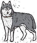 Vector van Een, wolf csp14135338 - Zoek naar Clip Art, Illustratie, Tekeningen en Clipart EPS Vector Grafieken Beelden
