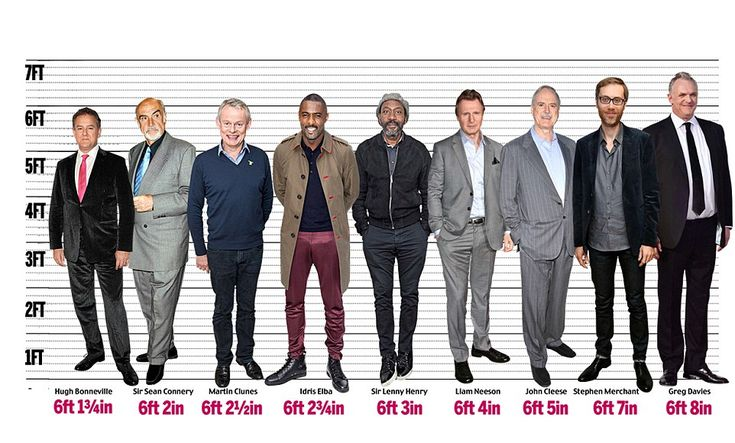 Actor David Tennant revealed this week that, at 6ft 1in, fans are often amazed by how tall he is in real life. So which stars are big on talent but small of stature?