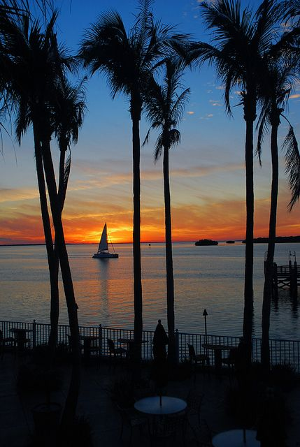 My favorite place: Sanibel Island, FL.... sigh...  Sunset Sail by Robert Dennis Photography