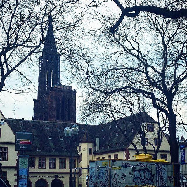 Day in Strasbourg #fco #francecommunity #ストラスブール #大聖堂 #cathedrale #冬 #france🇫🇷 #フランス #francia #frankreich #프랑스 #prancis #frankrijk #فرانسه #frança #франция #ฝรั่งเศส #fransa #pháp #visitfrance #jaimelafrance
