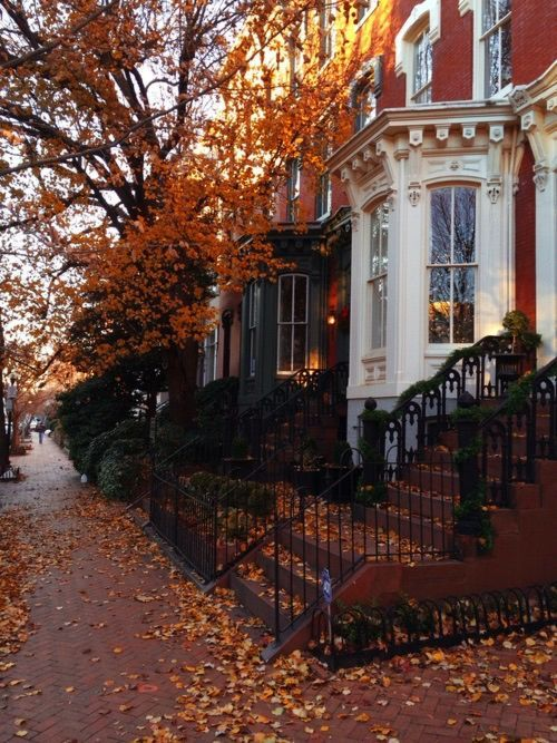 Changing colours of Autumn on the streets of New York City.