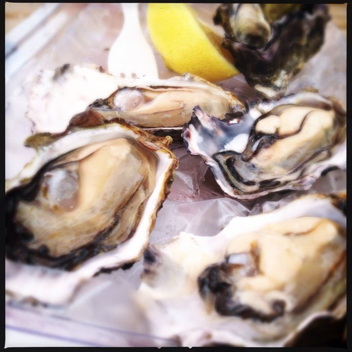 Fresh Coromandel Pacific Oysters available from the farm gate ... buy oyster meat, 1/2 shell or wholeshell at farm gate prices.   Also available at our retail outlet local seafood, cooked and fresh, including Greenlip Mussels, Kina, Paua, Crayfish ... come try our famous Mussel Chowder or Paua or Mussel fritters.  Open 7 days with the friendliest staff in town. We can also courier anywhere in New Zealand to help with your event or celebrations.