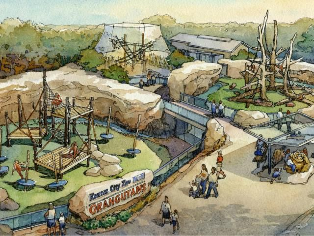 The Kansas City Zoo is opening a large new interactive orangutan habitat with a canopy and hillside trail that will challenge both the dexterity and intelligence of the apes while offering excellent viewing opportunities. It also features touchscreens that allow humans and the orangutans to interact in new ways.