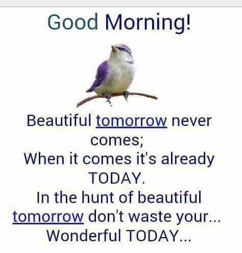 Learn to live in today  dont wait for tomorrow for your happimess
