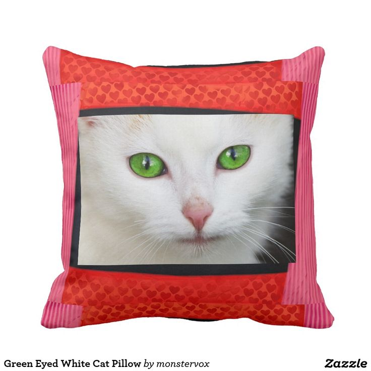 Animal Pillow Pinterest : Green Eyed White Cat Pillow #Cat #Pet #GreenEyes #Animal #Pillow My Zazzle Products at zazzle ...