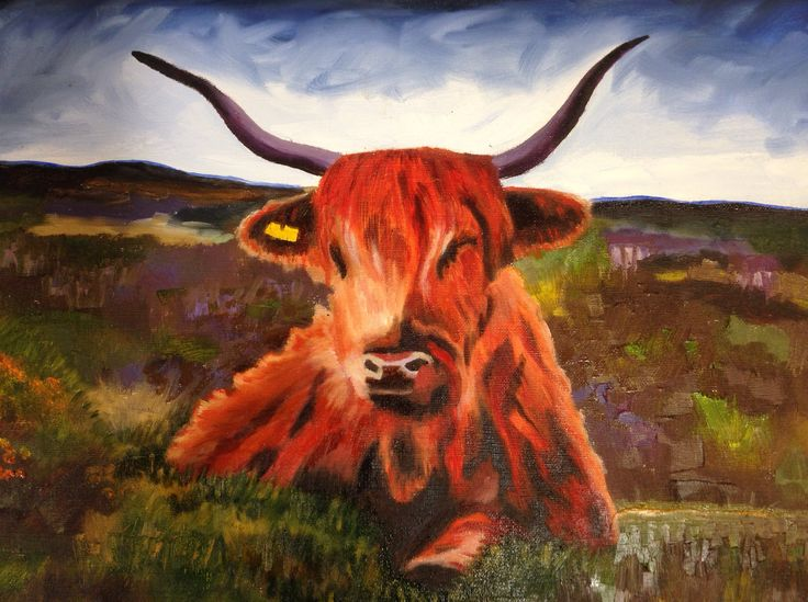Highland Cow - oil on canvas.   Oil Painting by Jane D Kerr