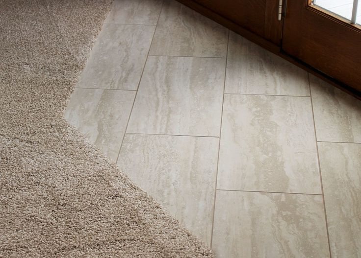 Flooring Transition Strips Carpet To Tile Alyssamyers