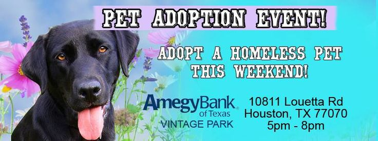 Go adopt your new best friend!!!!!!  **MULTI RESCUE PET ADOPTION EVENT** Please share to spread the word! The more people that come out to meet the dogs in these rescue's care the higher chance they all have of finding a new home. A new home means a freed up foster home that can pull another from the shelter. So it's saving two lives!  THIS SATURDAY! MAY 20th from 5 - 8pm at the Amegy Bank in Vintage Park: 10811 Louetta Road, Houston, TX 77070