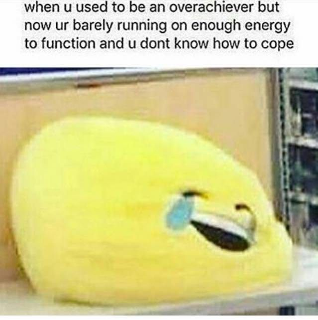 This Is Actually My Life Right Now What The Heck Has Happened Really Funny Funny Me Funny Memes