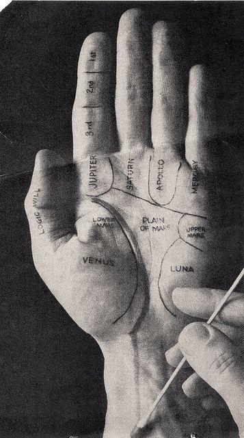 palmistry.