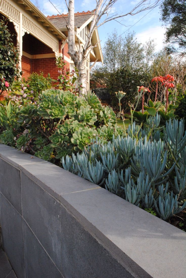 #Bluestone #garden edges, perfect match with Australian native garden.