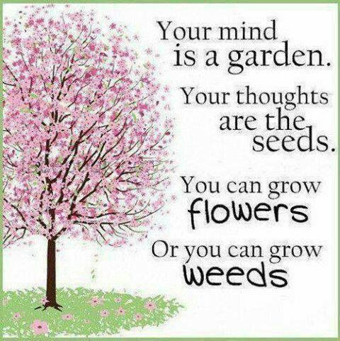 Your mind is a garden. Your thoughts are the seeds.  You can grow flowers, or you can grow weeds.