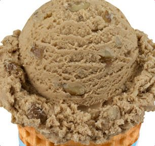 Baskin-Robbins | Black Walnut Ice Cream