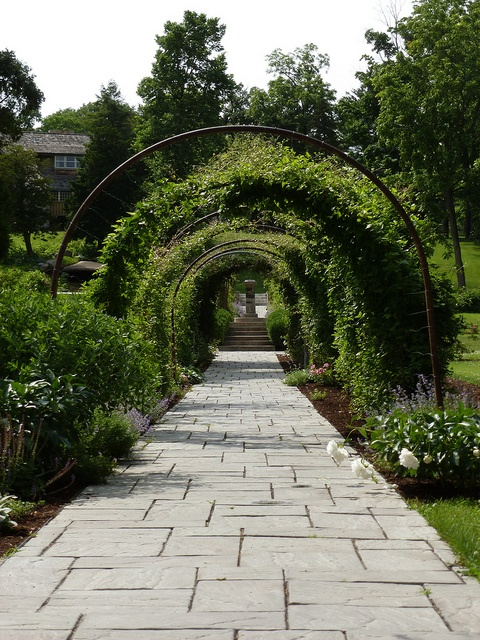 Garden Walkway At Fabyan Park In Batavia Illinois