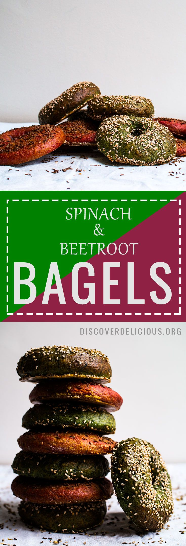 Spinach & Beetroot BAGELS!Chewy + malty in taste, vibrant and beautiful to look at! Vegan too. | Discover Delicious | discoverdelicious.org | #bagel #bread #baking #recipes