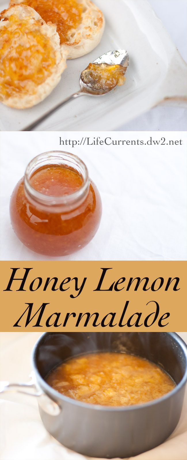 Honey Lemon Marmalade, like sunshine on your breakfast toast! By Life Currents