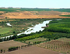 The Tigris River /ˈtaɪɡrɪs/ (( Arabic دجلة )) is the eastern member of the two great rivers that define Mesopotamia, the other being the Eup...