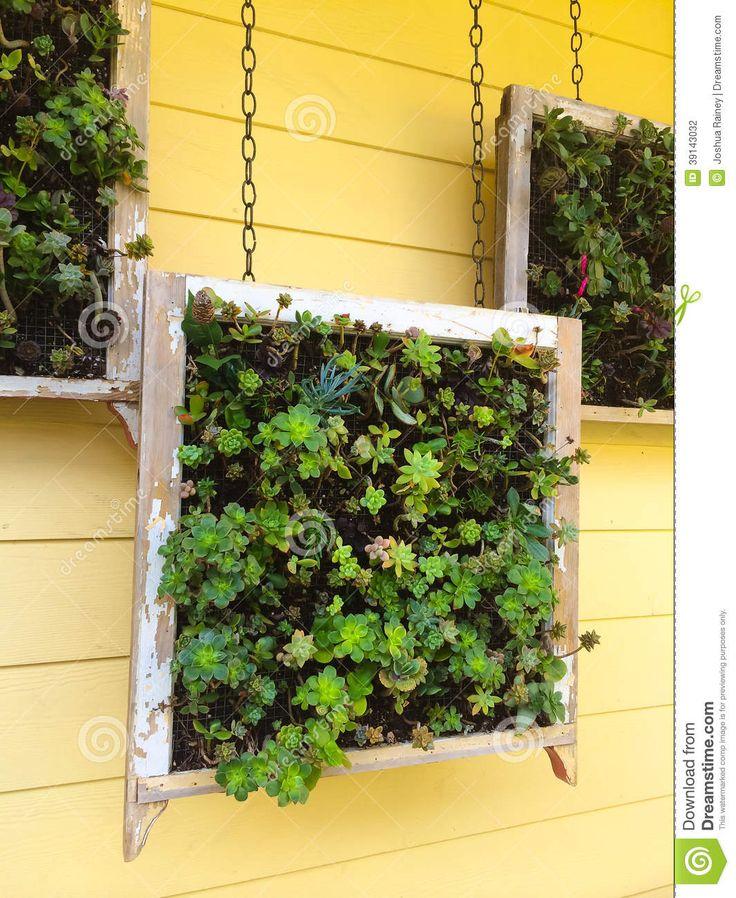 M s de 1000 ideas sobre macetas colgantes en pinterest for Plantas suculentas colgantes