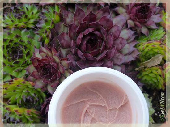 Crème pour mains abîmées – Millepertuis & Calendula