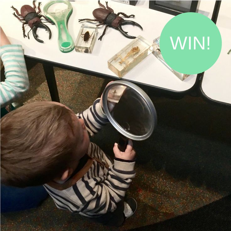 Scienceworks 25th Birthday Party - Giveaway! http://tothotornot.com/2017/04/scienceworks-25th-birthday-party/