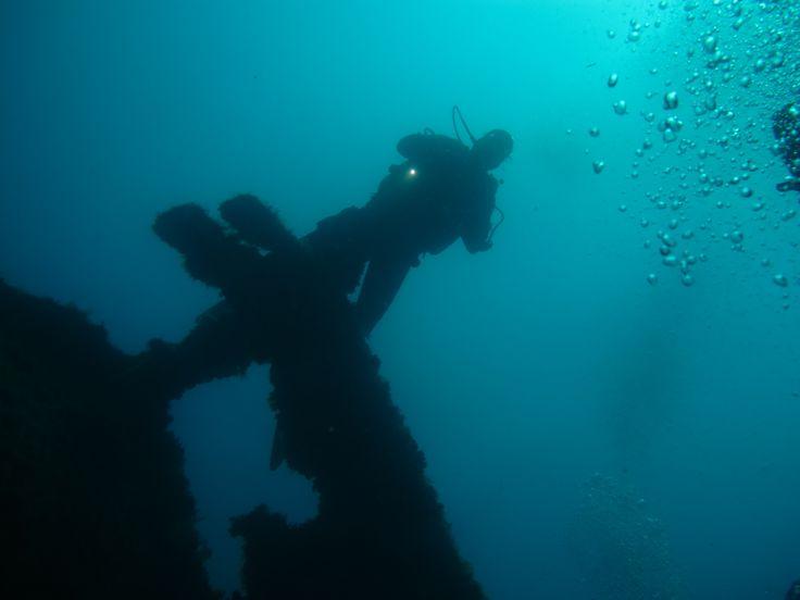 www.clubsubamicidelmare.it - vieni a scoprire il mare con noi!