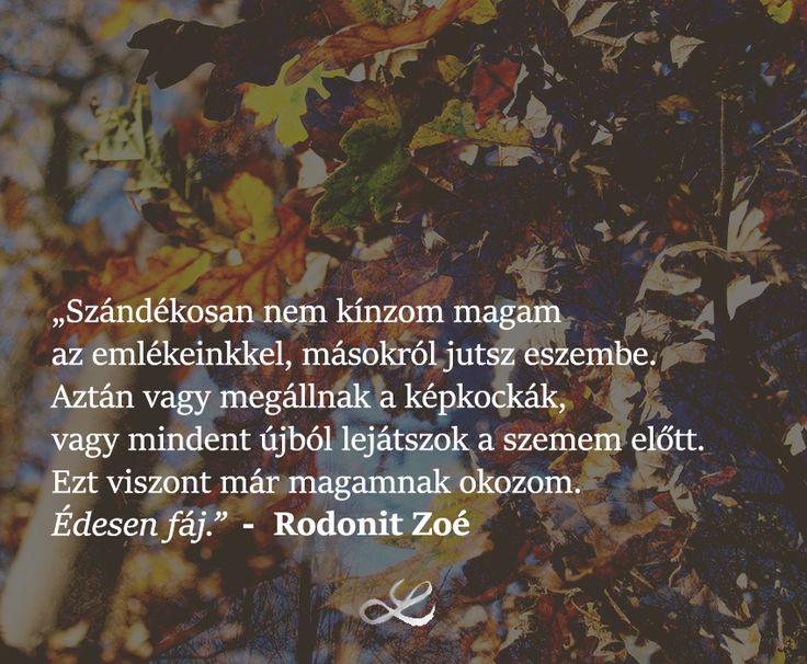 #lenduletmagazin #rodonitzoé #hungarianblogger #followme #fájdalom #édes #édesenfáj #fáj #elengedés #emlék #emlékek
