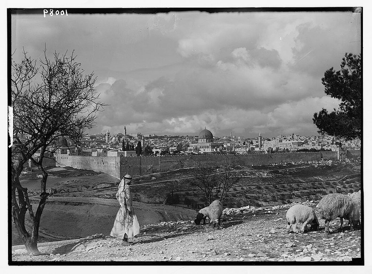 1920 Nebi Musa Riots: 557 Best History: Jewish Images On Pinterest