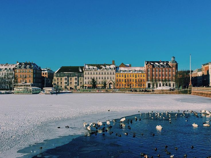 Throwback to a beautiful sunny winter day near Dronning Louises Bro  #copenhagenlife #copenhagen #winter #findroommate