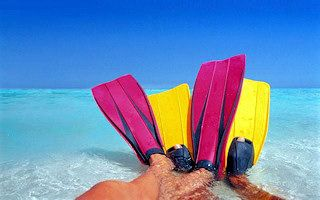 Cancun Travel Guide: Things to Do in Cancun. Cancun tours and attractions.