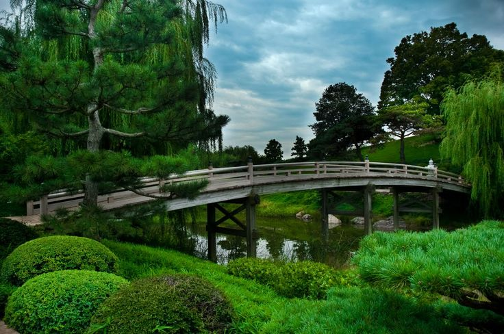 42 best espalier pleached and pollarded trees images on for Formal japanese garden