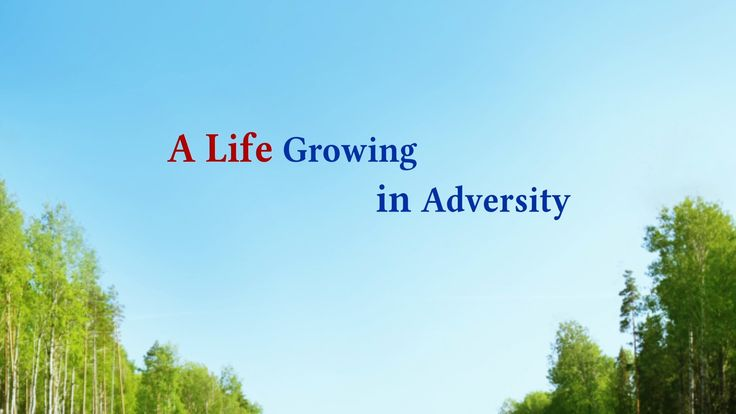 """God's Word Is the Power of My Life 
