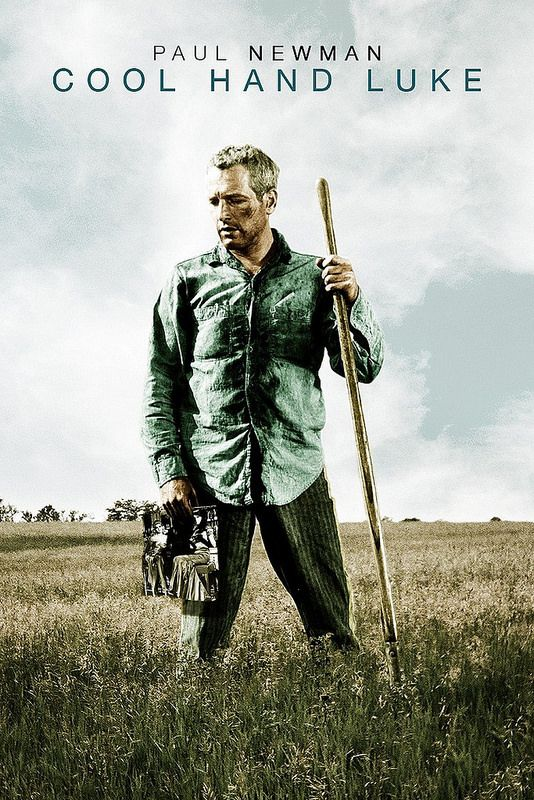 Watch Cool Hand Luke (1967) Full Movies (HD quality) Streaming