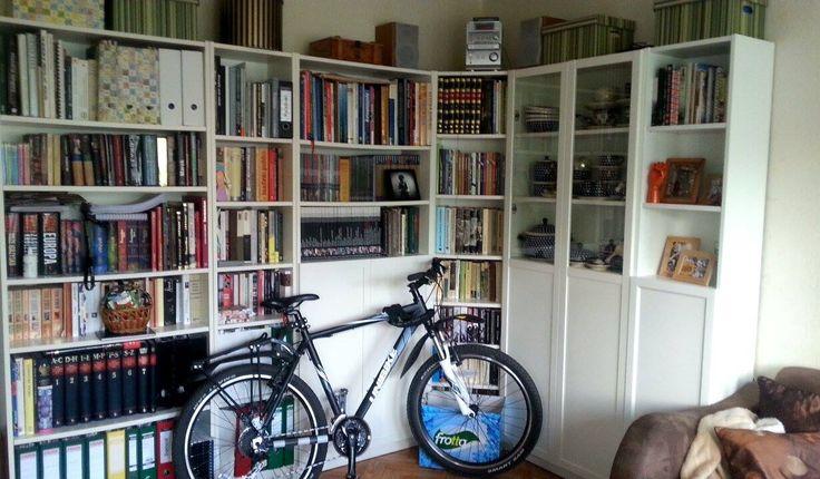 Pani Agnieszka Ewa proponuje biblioteczkę wielofunkcyjną - miłość do książek/ceramiki bolesławiec/roweru w jednym. Za rowerem kocie pudło... karton jest taki smaczny...