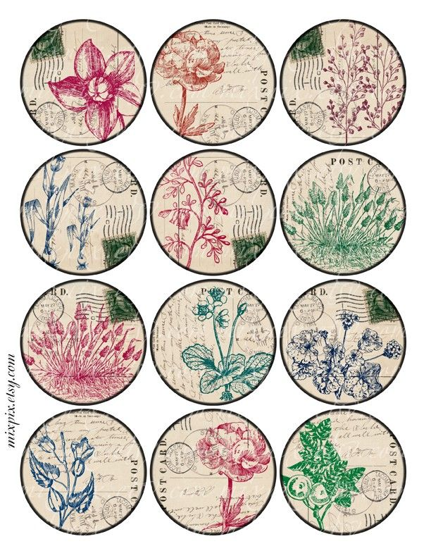 2.5 inch circles herbarium printable download digital collage sheet vintage images round label hang gift tag card no.230D. $4.00, via Etsy.