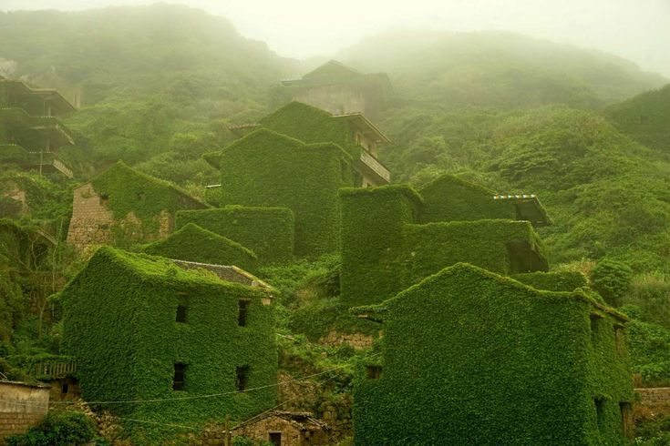 Zhoushan, China Houses are covered with creepers at a deserted village on Shengshan Island on May 31, 2015 in Zhoushan, China.