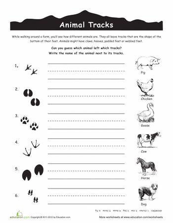 Worksheets: Animal Tracks: Farm Animals