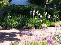 VILLATRÄDGÅRDENS HISTORIA - En inblick i trädgårdskonstens historia ger inspiration och god vägledning när det gäller att skapa en trädgård som har samstämmighet med huset. http://trga.se/utbildning/villatradgardens-historia/