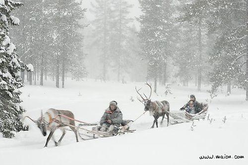 Yllas, Lapland, Finland