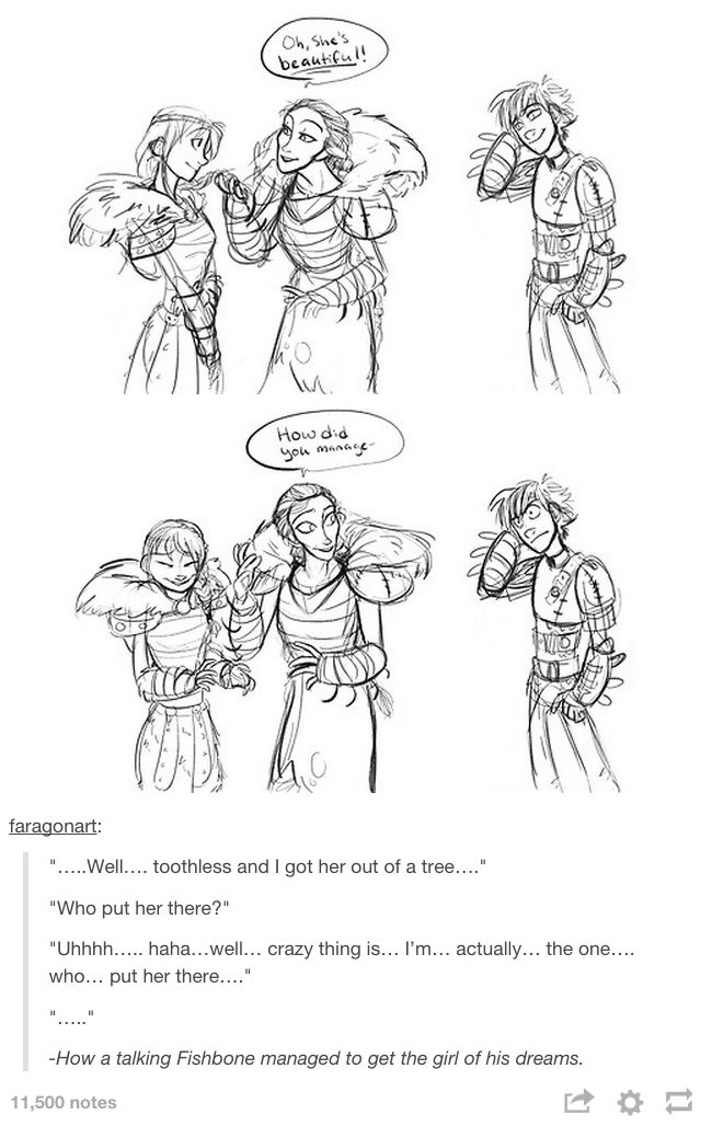 How Hiccup got the girl of his dreams.