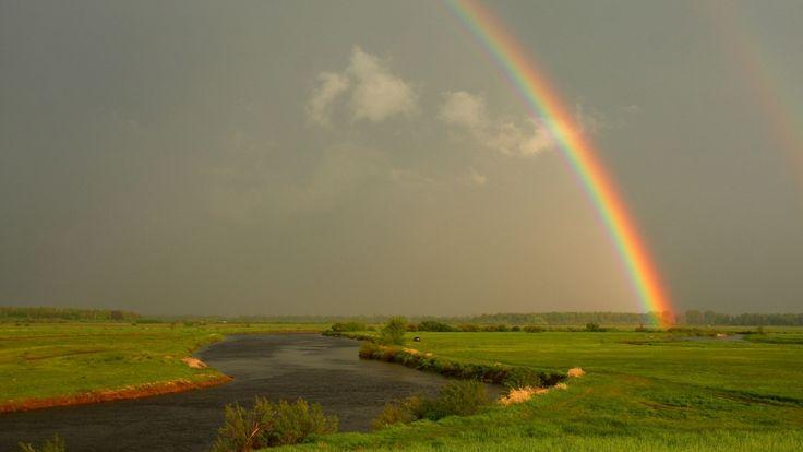 GoodPoland.com Narwiański Park Narodowy  #nature #river #bluesky #poland
