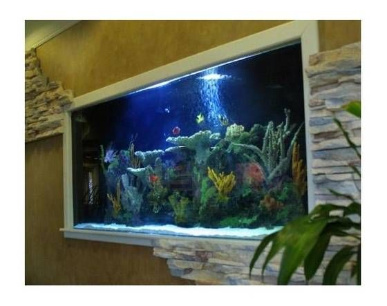 Sell Giant Acrylic Fish Tank 1,200 Gallon Aquarium 10L-3W-5H