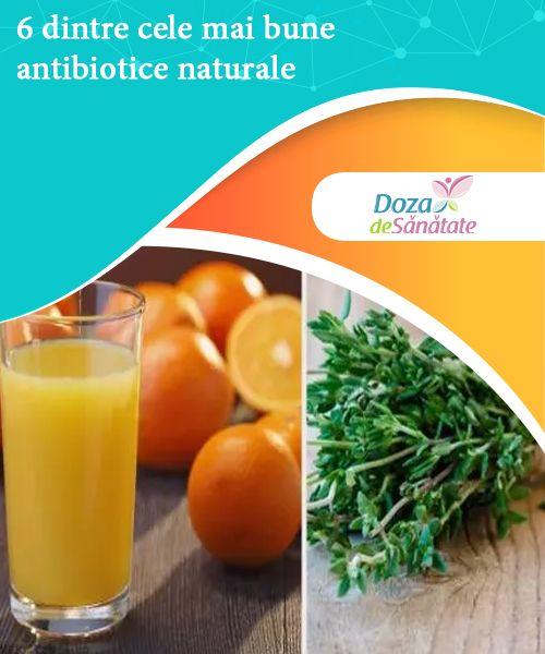 6 dintre cele mai bune antibiotice naturale   Cele mai bune antibiotice naturale te pot ajuta să eviți reacțiile adverse nedorite cauzate de produsele farmaceutice din comerț.