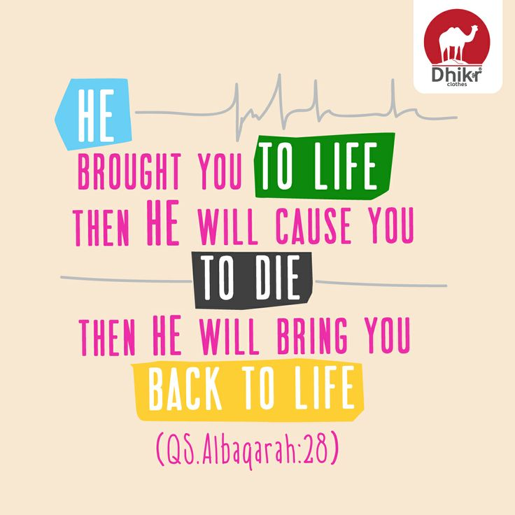 he brought you to life  then He will cause you to die  then He will bring you back to life  (QS2:28)
