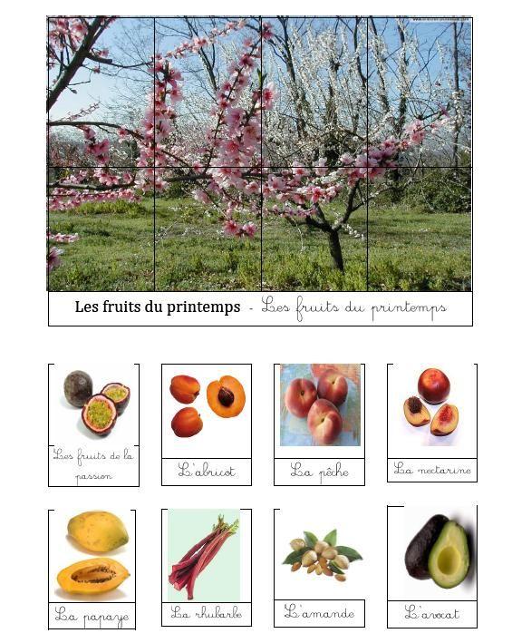 ovocie konzumované v jari