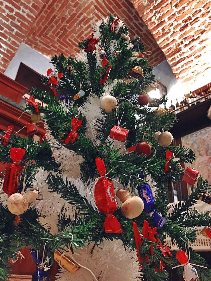 Our tasty Christmas Tree 🎄 #christam #christamastree