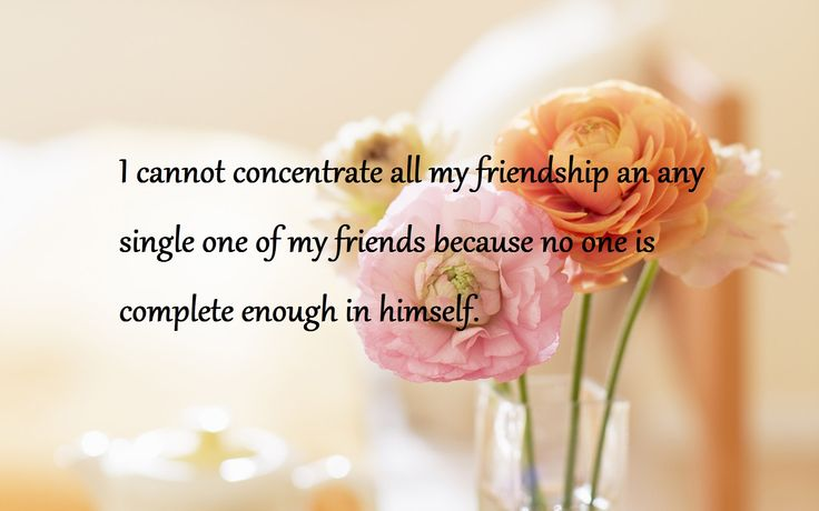 Nice Quotes About Friends  Nice Quotes About Friend  Friends Quotes