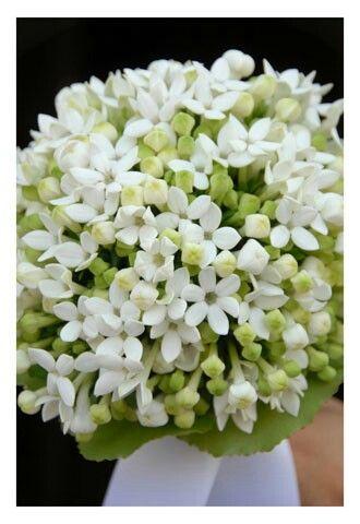 Bouquet fiori d'arancio