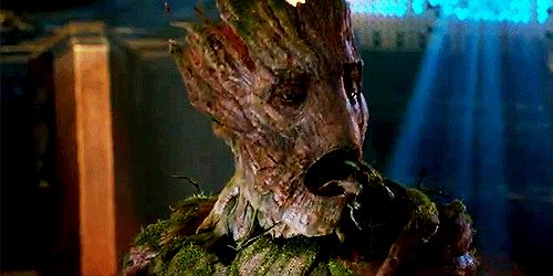He doesn't always have his shit together either. | 18 Reasons Groot Would Be The Perfect Boyfriend