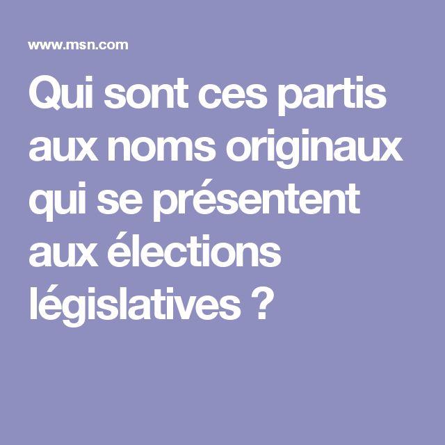 Qui sont ces partis aux noms originaux qui se présentent aux élections législatives ?